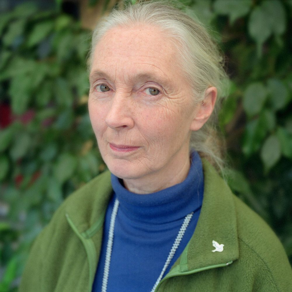 Portrait of Jane Goodall. Photographed in Toronto, Canada