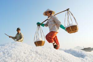 Salt Harvest, Nha Trang, Vietnam